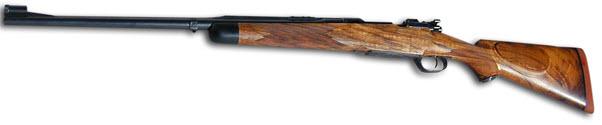 gunstock gun