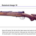 Gunstock10