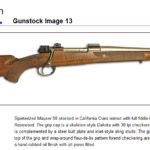 Gunstock13