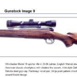 Gunstock9