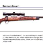 Gunstock1