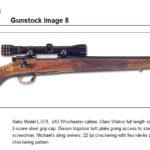 Gunstock8